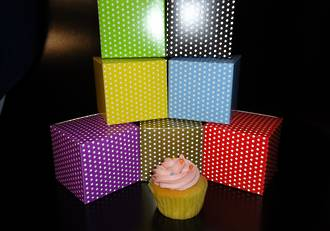 PACK OF 10 - Single cupcake box + insert - printed stock colours