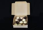 12 - Cupcake Eco Box 60mm Standard Insert - 12 x 12 x 4""